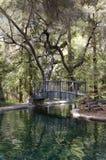 Brücke über reflektierendem Teich Lizenzfreie Stockfotografie