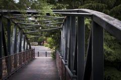 Brücke über San Antonio River Lizenzfreie Stockbilder