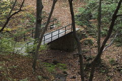 Brücke über trockenem Nebenfluss im Holz Stockfotos