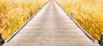Brücke über zum Grasfeld Lizenzfreie Stockfotografie