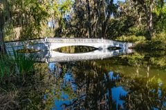 Brücke über Zypresse-Sumpf lizenzfreies stockfoto
