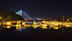 Brücke Ada in Belgrad Lizenzfreie Stockfotografie