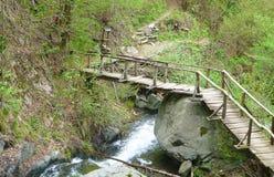 Brücke auf den Felsen Stockbilder