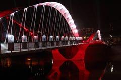 Brücke auf die Saone-Einweihung lizenzfreie stockfotos