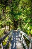 Brücke auf einem Fluss Nationalpark Abel-Tasman, Neuseeland Stockbilder