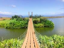 Brücke auf See mit schönen Anlagen Stockfotografie