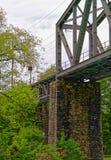Brücke in Bezirk die Schweiz Interlakens Oberhasli Bern Lizenzfreie Stockfotografie