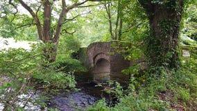BRÜCKE BICKHAM BRIDGEBICKHAM u. x28; FRÜHER UNTER DER GEMEINDE VON NORD-HUISH& x29; Devon Großbritannien stockfotografie