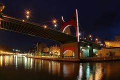 Brücke Bilbaos Guggenheim Stockbilder