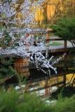 Brücke in blühendem Garten Stockbild