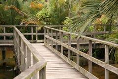 Brücke - botanische Gärten, Singapur Stockfotos