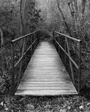 Brücke in das Unbekannte Stockfotografie