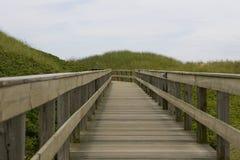 Brücke in den Dünen lizenzfreies stockbild