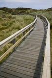 Brücke in den Dünen stockfotos
