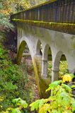 Brücke in der Kolumbien-Schlucht! Stockbild