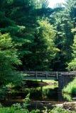 Brücke in der Wildnis Lizenzfreies Stockfoto
