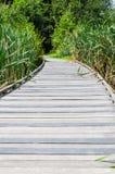 Brücke des Holzes Stockfotografie