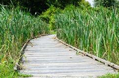 Brücke des Holzes Lizenzfreie Stockfotografie