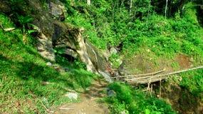 Brücke des Holzes und des Bambusses Stockfotos