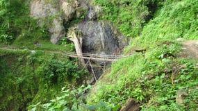 Brücke des Holzes und des Bambusses im Wald Stockfotografie