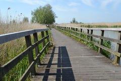 Brücke des Nebenflusses in der niederländischen Naturlandschaft Stockfoto