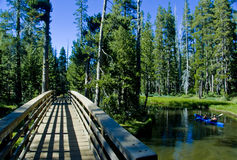 Brücke in die Wildnis stockfotos