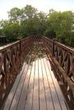 Brücke, die zu Mangrove führt Lizenzfreie Stockbilder