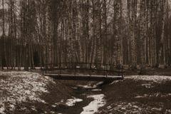 Brücke in einem Wald Lizenzfreie Stockfotos