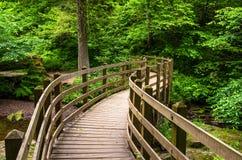 Brücke entlang Forest Path Lizenzfreie Stockbilder