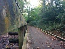 Brücke in Forrest lizenzfreie stockfotos