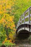 Brücke in Herbstwald Stockbild