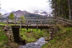Brücke im Berg stockbild