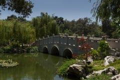 Brücke im chinesischen botanischen Garten lizenzfreie stockbilder