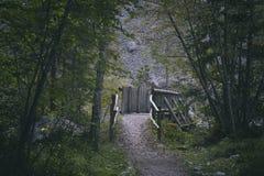 Brücke im hellen Wald Lizenzfreie Stockfotografie