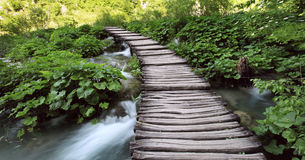 Brücke im Holz Lizenzfreie Stockfotografie