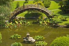 Brücke im japanischen Garten Stockbild
