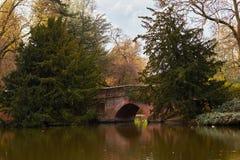 Brücke im Park lizenzfreie stockbilder