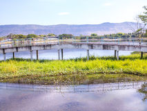 Brücke im Park stockfotos
