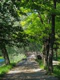 Brücke im Park von Gatchina, Russland Stockbilder
