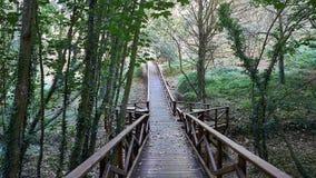 Brücke im Santa Cruzt-Strand, Santa Cruz in Santa Cruz Galicia, Spanien Lizenzfreie Stockfotografie