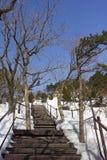 Brücke im Schnee Stockfoto