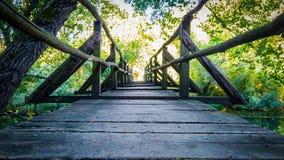 Brücke im Wald Stockfotografie