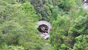 Brücke im Wald Dali stock video footage