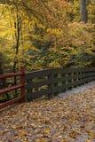 Brücke mit schönem Herbstlaub Stockfotografie