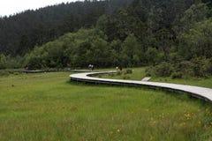 Brücke in Shangri-La Stockbild