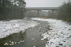 Brücke u. Enten im Schnee Stockfotografie