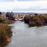 Brücke umgeben durch Vegetation Lizenzfreies Stockfoto