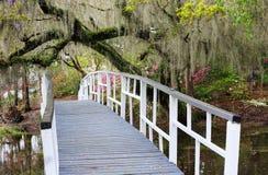 Brücke und hängendes Moos am Charleston Sc-Magnolien-Garten-Frühling lizenzfreie stockfotos