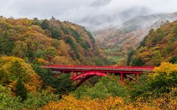 Brücke und Tal Higashiizawa in der Herbstsaison mit dem Regnen und Nebel Lizenzfreie Stockfotografie
