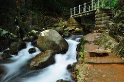Brücke und Wasserfall stockbild